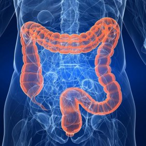 Gastrointestinal Cancer Congress