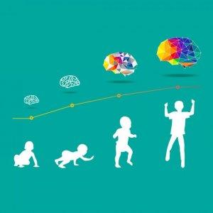 Comprehensive Development Plan for Needy Children