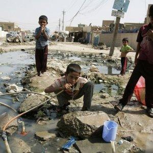 Cholera Case  in Qom