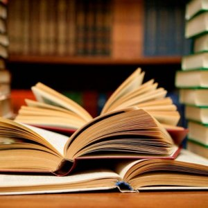 Humanities Curriculum Under Review