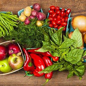 Eating Habits: Plus & Minus