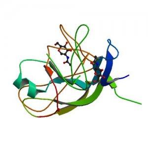 Quick Detection of HCG Hormone