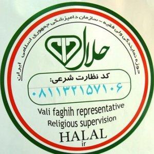 Iran Halal Food Popular Abroad