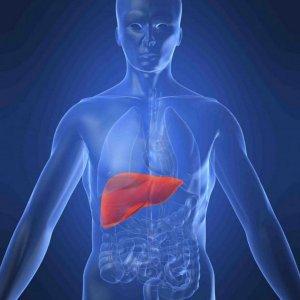 Probe Into Hepatitis A Outbreak