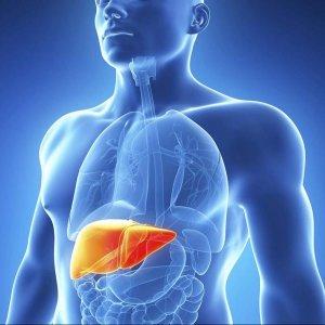 Hepatitis Rate Drops