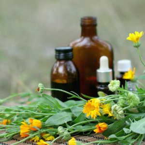 Herbal Medicine More Expensive