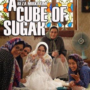 Iranian Films in Serbian City Festival