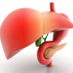 70% Prone to Fatty Liver Disease