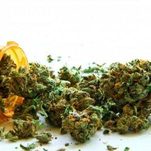 Marijuana Most-Used Drug in Europe