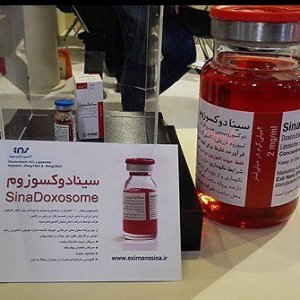 Anticancer Nanodrug Exports to Syria