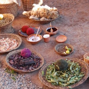 Studying Natural Dyes to Identify Ancient Plants