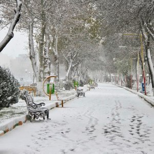 Snow Envelopes 18 Provinces, Schools Closed