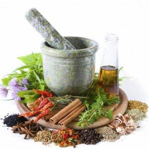Traditional Medicine Potential