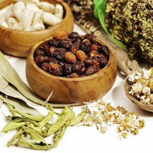 Iran Traditional Medicine Workshops in Vienna