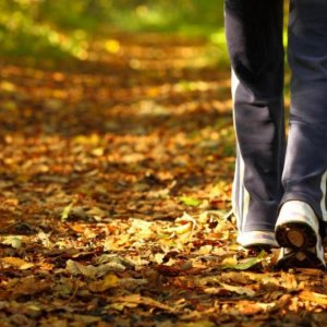 Vitamin D Levels Linked to Physical Activity