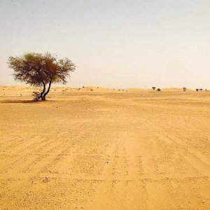 Desertification Threatens Fars