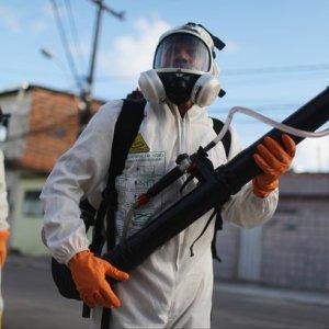 No Zika Travel Warning