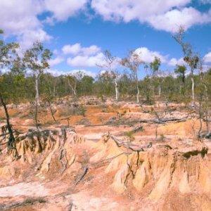 DOE: Desertification Rate Alarming