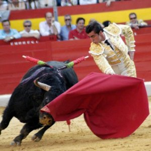 France Tick Bullfighting Off Cultural Heritage List