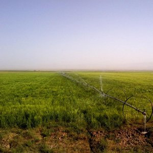 Russians to Help Find Groundwater