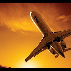 Int'l Tourism Grows Despite Safety Concerns