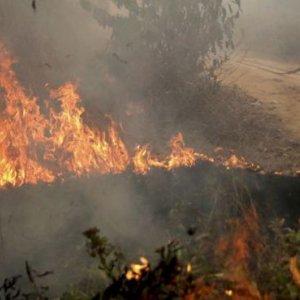 Indonesia Wildfires Causing SE Asia Haze