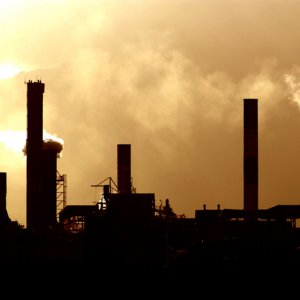 Spread of Industries Harms Environment
