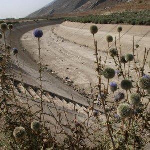 Iran Ready to Adapt to Global Warming
