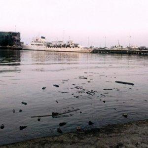 Land Waste Threatening Marine Life