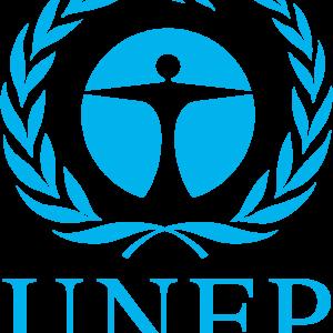 Iran Attending UNEP Program