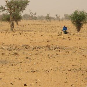 Desertification Afflicts Qazvin