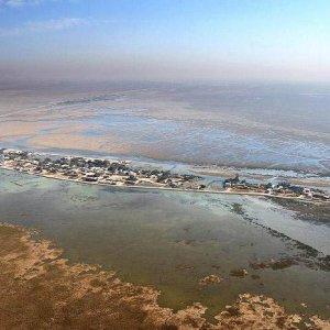 DOE Plans Shadegan Wetland Restoration