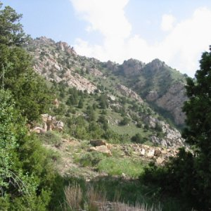 Tourism Project Harming Tehran Forest