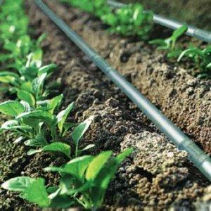 Efficient Drip Irrigation System Developed