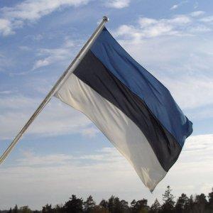 Estonia Should Slow Minimum-Wage Rises