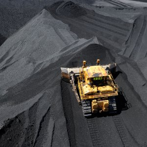 Green Worries Undercut $3.3b Coal India Sale