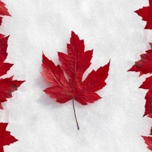 Canadian Business Sentiment Still Tepid