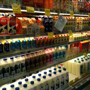 Russia Lifts Ban on NZ Dairy Products