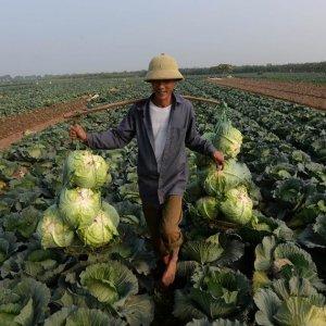 Vietnam GDP to Lag Behind