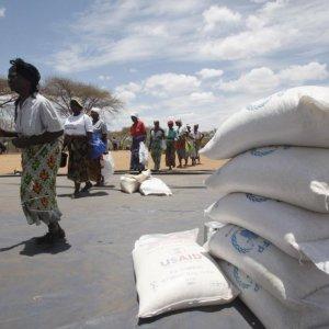 Zimbabwe Food Imports Rise