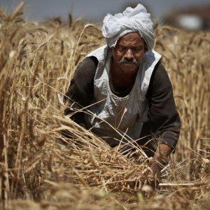 Egypt Inflation Bites