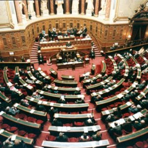 French Parliament Adopts Controversial Economic Reforms