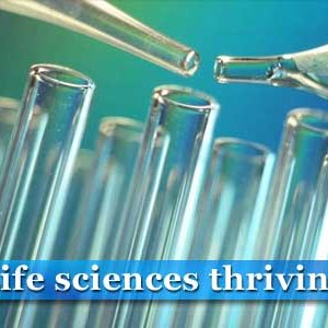 Life Sciences Challenge Global Tech Sector