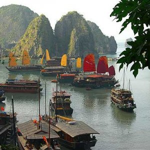 Vietnam Courting Investment
