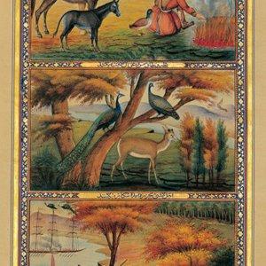 Illustrators Asked to Work on 'Arabian Nights'