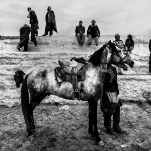 Iranian Photographer Wins French Award