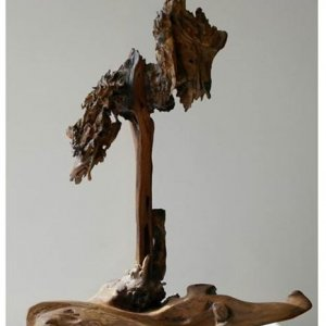 Abstract Sculptures in Wood