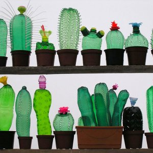 Plastic Bottles Turned Into Beautiful Sculptures