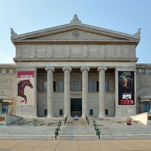 US Supreme Court Takes Up Artifact Case