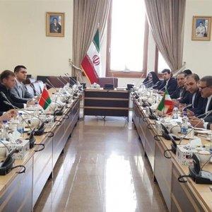 Belarus Delegation in Consular Talks